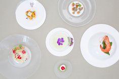 Grads: Living Plates by Lina Saleh
