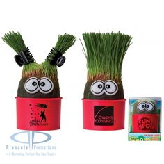 """Eye-Grow Promotional Plant... watch your plant grow """"hair"""" and style as you choose.  Unique logo item"""