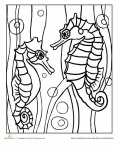 Nice coloring pages of all kinds! Beach, Bugs, Animals, etc.! :)