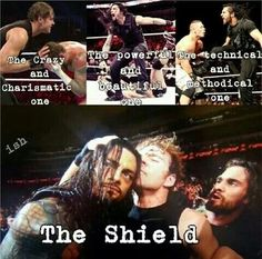 The shield - wwe & wwf News Dean Ambrose Shield, Roman Reigns Dean Ambrose, Le Shield, The Shield Wwe, Roman Empire Wwe, Wwe Funny, Wwe Superstar Roman Reigns, Wonder Twins, Wwe Girls