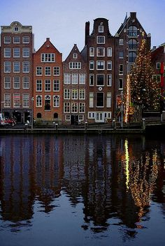Damrak Christmas tree, Amsterdam, Netherlands LOVE this country!