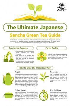 The Ultimate Japanese Sencha Green Tea Guide Cup & Leaf Green Tea greentea leaf Sencha Tea, Sencha Green Tea, Matcha Tea Benefits, Green Tea Benefits, Best Tea Brands, Best Matcha Tea, Different Types Of Tea, Tea Types, Best Green Tea