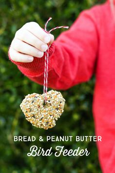 Kid Friendly Bread and Peanut Butter Bird Seed Feeder - a fun Spring craft