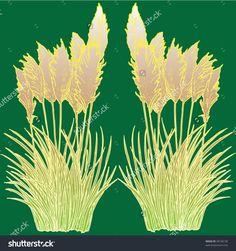stock-vector-pampas-grass-38190130.jpg (1500×1600)