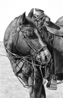 Beautiful pencil drawing