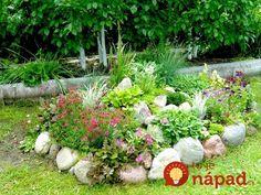 Chcete v záhrade skalku? 35 prekrásnych nápadov, ktoré určite oceníte! Rock Garden Design, Plants, Garden, Plant, Planets