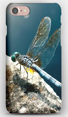 iPhone 7 Case Dragonfly, Stone, Insect, Surface