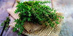 The Properties of Thyme - Holistic Health Herbalist Wellness Tips, Health And Wellness, Health Tips, Thyme Benefits, Thyme Herb, Convenience Food, Natural Remedies, Homeopathic Remedies, Herbs