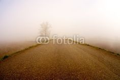 nebbia series8 Photo by mauro paolo cascasi | Your Walls, Your Style! | artGalore.ca