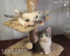 Japanese Felted Cats 120902c.jpg