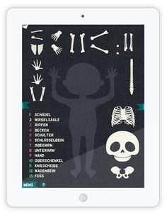 """""""Das ist mein Körper"""" ist eine schön gemachte Anatomie und Biologie Lern App für etwas ältere Kinder. Zuerst wählt man aus neun Kindercharakteren einen aus, dann kann man an ihm die 9 Bereiche des Körpers erkunden und spielerisch eine Menge darüber lernen. In logisch aufgebauter Reihenfolge erfährt man zuerst alles über das Wachstum des Körpers. Danach kommen Haut, Sinne, Verdauung, Atemsystem, Blutkreislauf, Muskeln, Nervensystem und zuletzt das Skelett."""