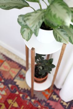 Plant Stand DIY Make this Mid Century inspired plant stand to show off the houseplants you haven't killed!Make this Mid Century inspired plant stand to show off the houseplants you haven't killed!