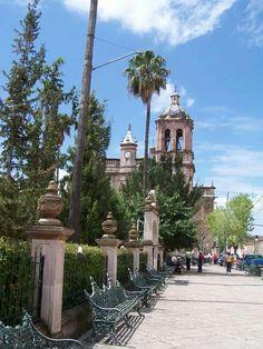 Jardin principal de Villanueva Zacatecas.