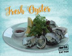Have you tried Blue Fish's Famous Giant Seafood Platter its a real taste of Australia Best Seafood and great to share with friends & family. Fresh Oysters, Fresh Seafood, Blue Fish Restaurant, New Year Menu, Sydney Restaurants, Seafood Platter, Darling Harbour, Restaurants In Sydney