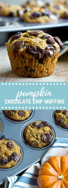 These Pumpkin Chocolate Chip Muffins are perfectly moist, and delicious and slammed with nutrition-- hi pumpkin, chia seeds, flaxseeds and brewer's yeast. Perfect for nursing moms (eeerr... hungry dads) + a list of foods that supports nursing.