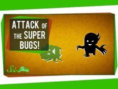 Meet the Super Bugs  http://chzb.gr/1r5Akwy
