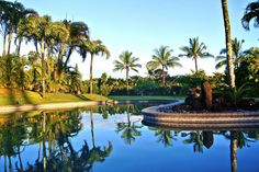 Kauai Vacation Rental - Ke Aloha Estate KAUAI, Vacation Rental in Princeville North Shore Kauai Hawaii USA Private Home