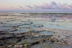 Experience Zanzibar like a Local | Travelettes