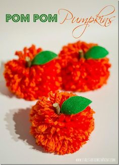 Pom Pom Pumpkins!! I know how to make the Pom Pom's and the leaves and sticks are just too easy to put add!!