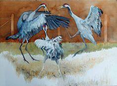 Bi uns to Hus – eine Ausstellung von Hanka und Frank Koebsch Rostocker Zoo, Art Studies, Bird Art, Pet Birds, Fascinator, Vintage Art, Watercolor Art, Art Photography, Moose Art