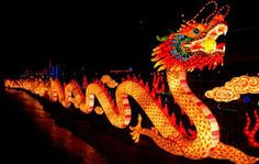 Chinese Dragon 2012 - Dragon (zodiac) - Wikipedia, the free encyclopedia Water Dragon, Fire Dragon, Dragon Art, Snake Dragon, Chinese Zodiac Dragon, Dragon Zodiac, Dragon China, Chinese Lantern Festival, Chinese Festival