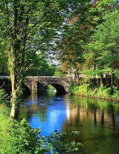 England Travel Inspiration - River Tavy, Tavistock, Devon, England