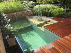 Nature pool hut water plants trees Natural Swimming Ponds, Small Swimming Pools, Swimming Pool Designs, Mini Pool, Water Garden, Water Plants, Herb Garden, Cabana, Pool Houses