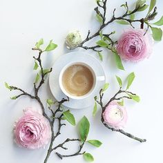 ~ Spring Pirouettes ~ Coffee & Blossoms