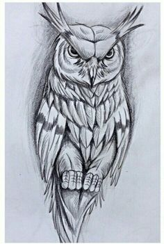 Flower Line Drawings, Outline Drawings, Pencil Art Drawings, Cool Drawings, Drawing Sketches, Owl Tattoo Design, Tattoo Sleeve Designs, Sleeve Tattoos, Owl Stencil