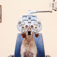 Maddie is getting new eyeglasses