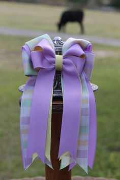 Devon lead line Equestrian hair Bows by BowstotheShows on Etsy, $22.00