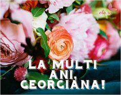 Imagini pentru imagini sf gheorghe la multi ani Sf, Flowers, Plants, Plant, Royal Icing Flowers, Flower, Florals, Floral, Planets