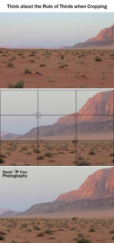 Think about the Rule of Thirds when Cropping | Boost Your Photography