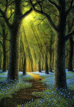Danny Flynn - Bluebell Woods