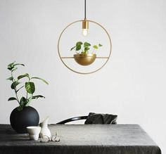 Add light and modern Nordic style to your home with this stunning wall mounted round planter lamp! Made from modern iron metal. Measures approximately x Free Worldwide Shipping & Money-Back Guarantee Wall Mounted Lamps, Led Wall Lamp, Ceiling Lamps, Floor Lamps, Sky Garden, Led Lampe, Creative Decor, Hanging Lights, Modern Lighting