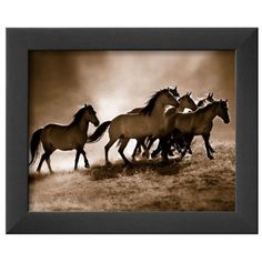 Art.Com Assorted Wild Horses Framed Art Print ($47) ❤ liked on Polyvore featuring home, home decor, wall art, assorted, framed wall art, horse wall art and horse home decor
