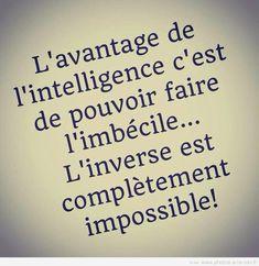 image drole intelligence