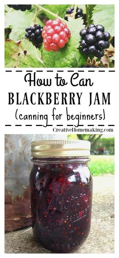 Easy recipe for canning homemade blackberry jam from fresh blackberries with either liquid pectin or powdered pectin.