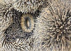 Zemer Peled Sculptures made of thousands of ceramic shards