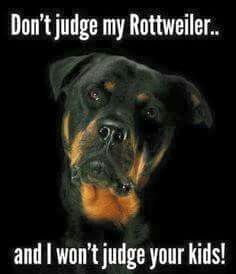 Don't judge my Rottweiler and I won't judge your kids - lol even though my rottie behaves better! Positive Dog Training, Basic Dog Training, Training Your Puppy, Training Dogs, Crate Training, Rottweiler Love, Rottweiler Puppies, Rottweiler Quotes, Beagle