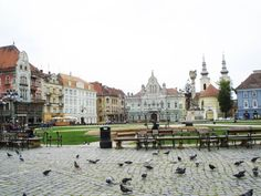 Downtown Timisoara  I was there in 1999