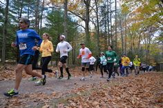Lacawac S 3rd Annual Lake To Lake 8k Trail Run 5k Woods Walk And Wag Dog S Welcome On Sunday October 16th On The Trails Lake Wallenpaupack Lake Ariel Lake