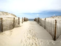 Beach sand dune path, Coastal Inspired Living with Decor, Crafts and more.