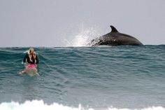 Chloe Buckley spots dolphin in the lineup.