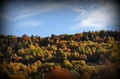 Kamesznica - Beskid Śląski - Barania Góra