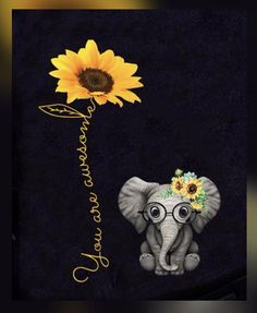 Sunflower Quotes, Sunflower Pictures, Sunflower Art, Sunflower Garden, Elephant Quotes, Elephant Love, Wallpaper Iphone Cute, Wallpaper Backgrounds, Wallpapers
