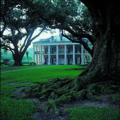 Oak Alley Plantation in LA.- beautiful plantation home Southern Plantation Homes, Southern Mansions, Southern Homes, Plantation Houses, Southern Charm, Gardens, Arquitetura, Debutante, Luxury Houses