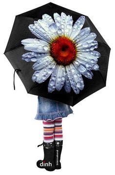 FLOWER UMBRELLA...............