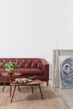 "From runway to living room, oxblood is fall's ""it"" fashion color."