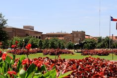 Texas Tech University Campus is beautiful!